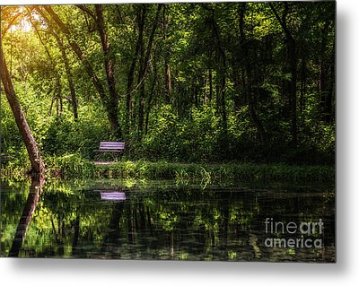 Resting Bench At The Chickasaw National Recreation Area Metal Print by Tamyra Ayles