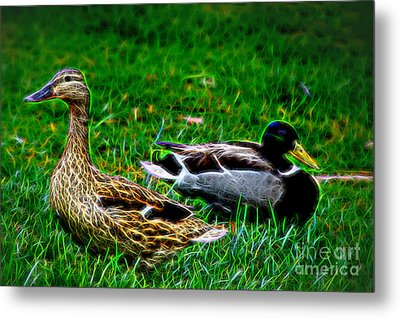 Metal Print featuring the photograph Resting Ducks by Mariola Bitner