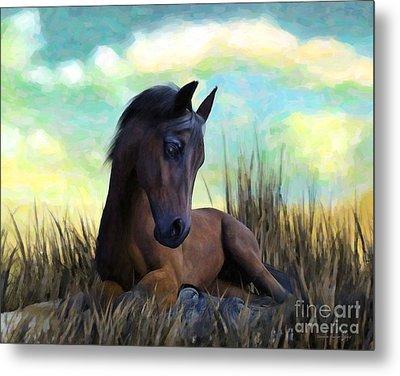 Metal Print featuring the painting Resting Foal by Sandra Bauser Digital Art