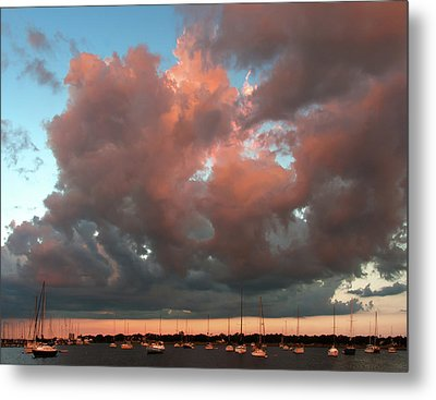 Resting In The Sunset Metal Print by Carolyn Dalessandro