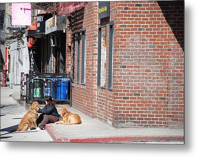 Resting On The Corner Metal Print by Rob Hans
