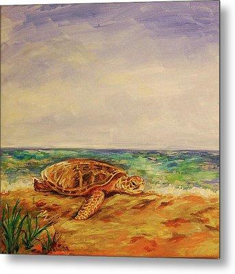 Resting Sea Turtle Metal Print by Danielle Hacker