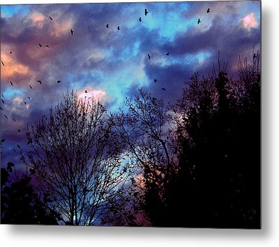 Return Of The Crows Metal Print by Martin Morehead
