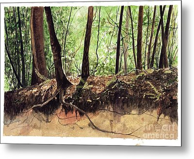 Returning To Your Roots Metal Print by Carla Dabney