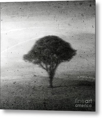 Revelation - 02b Metal Print by Variance Collections