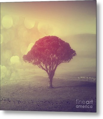 Revelation - 09 Metal Print by Variance Collections