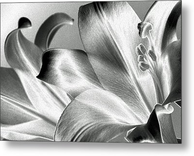 Metal Print featuring the photograph Reverse by Steven Huszar