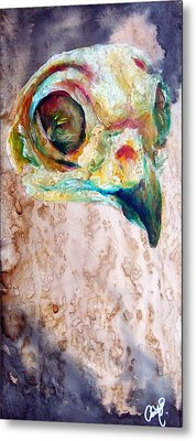 Revolution Burrowing Owl Metal Print by Christy  Freeman
