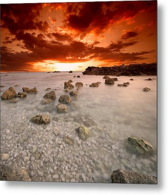 Metal Print featuring the photograph Rhapsody In Red by Philippe Sainte-Laudy