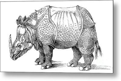 Rhinoceros Metal Print by Albrecht Durer