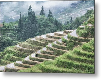 Metal Print featuring the photograph Rice Terraces by Wade Aiken
