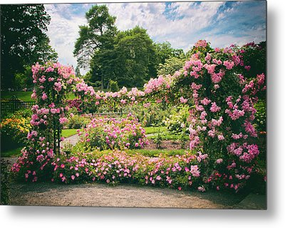 Riches Of Roses Metal Print by Jessica Jenney