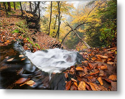Ricketts Glen State Park Ganoga Falls Allegheny Mountains Pennsylvania Metal Print by Mark VanDyke
