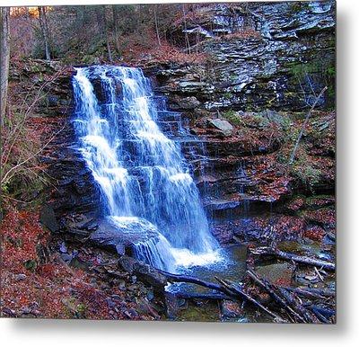 Ricketts Glen Waterfall 3941  Metal Print by David Dehner