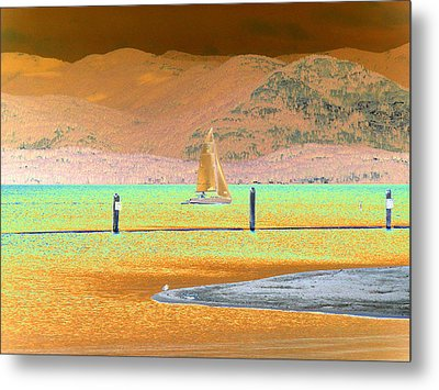 Ride The Wind Metal Print by Peter  McIntosh
