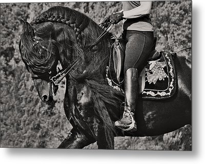 Rider And Steed Dance Metal Print by Wes and Dotty Weber