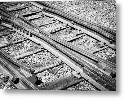 Metal Print featuring the photograph Riding The Rail by Colleen Coccia