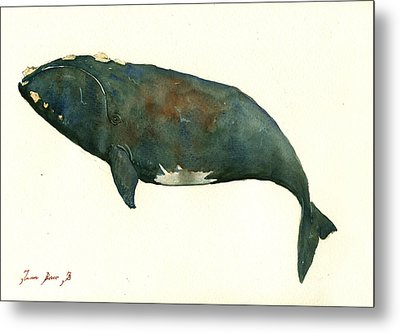 Right Whale Painting Metal Print by Juan  Bosco