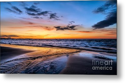 Riot Of Colour Metal Print by Adrian Evans