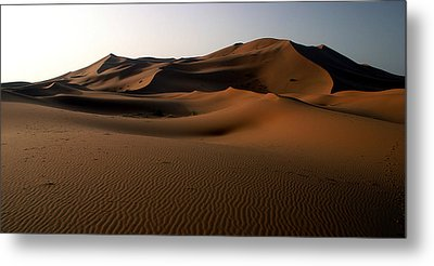 Ripples In The Sand Metal Print by Ralph A  Ledergerber-Photography