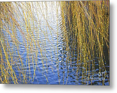 Ripples Metal Print by Linda Prewer