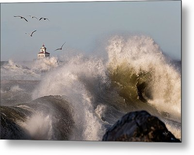 Metal Print featuring the photograph Rise Above The Turbulence by Everet Regal