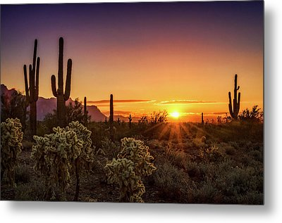 Metal Print featuring the photograph Rise And Shine Arizona  by Saija Lehtonen