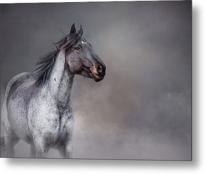 Metal Print featuring the photograph Rising From The Mist by Debby Herold