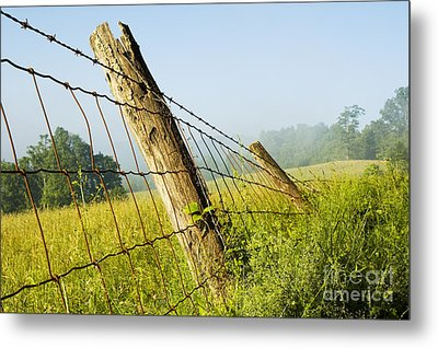 Rising Mist With Falling Fence Metal Print by Thomas R Fletcher