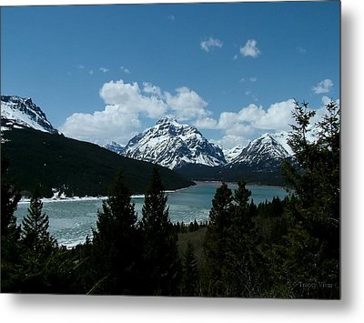 Rising Wolf And Two Medicine Lake Metal Print