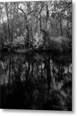 River Bank Palmetto Metal Print by Marvin Spates