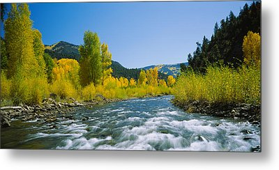 River Flowing In The Forest, San Miguel Metal Print by Panoramic Images