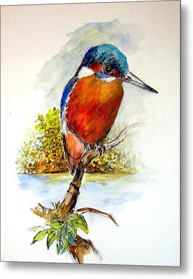 River Kingfisher Metal Print