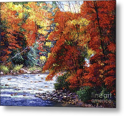 River Of Colors Metal Print by David Lloyd Glover