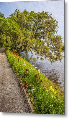 Metal Print featuring the photograph River Path 1 by Steven Ainsworth