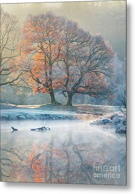 River Reflections - Winter Metal Print by Tony Higginson