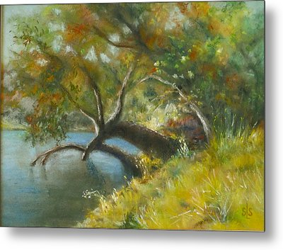 River Reverie Metal Print