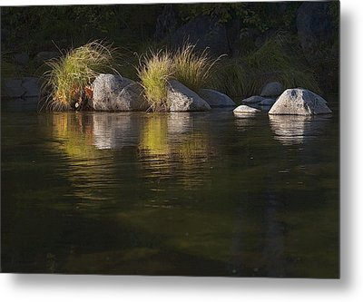 Metal Print featuring the photograph River Rocks And Grass by Larry Darnell