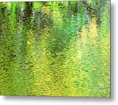 River Sanctuary Metal Print