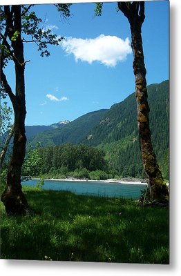 River Shade Metal Print by Ken Day
