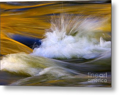 River Metal Print by Silke Magino