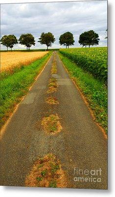 Road In Rural France Metal Print by Elena Elisseeva