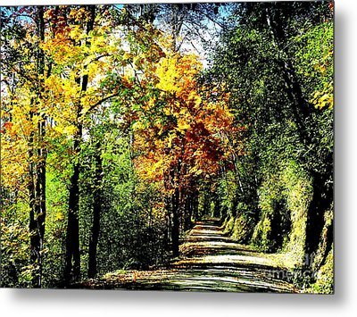 Metal Print featuring the photograph Road Into Autumn by Terri Thompson