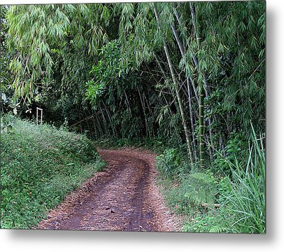 Road Into Bamboo Forest Metal Print by Jack Herrington