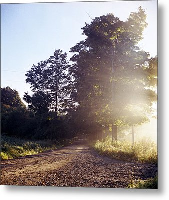 Metal Print featuring the photograph Road by Josean Rivera