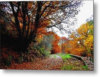 Road Through An Autumn Forest H B Metal Print by Gert J Rheeders