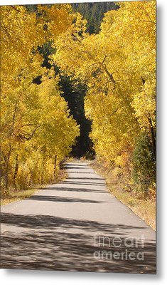 Road To Autumn Metal Print by Dennis Hammer