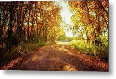 Metal Print featuring the photograph Road To Eternity by John De Bord