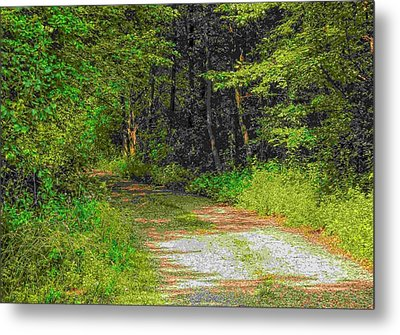 Road To Heaven Metal Print by Michael Degenhardt