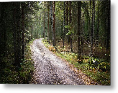 Road To The Light Metal Print